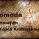 g_komoda_topola