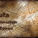 g_pufa_zywiec
